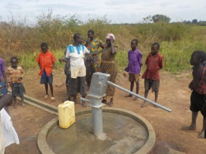 TDT funded a well! Now the village is cleaner, more healthy and people don't need to travel miles for water!